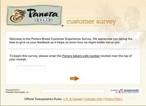 Paneralistens.com Survey