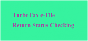 TurboTax E-file Return Status Checking